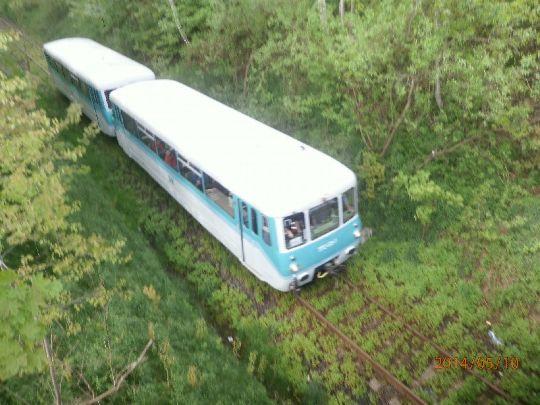Ferkeltaxi OSEF Löbau, Schienenbus 047