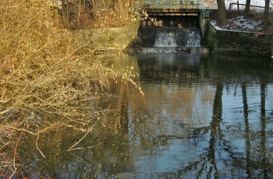 Pod rybníkem.