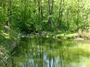 Smíchovský potok
