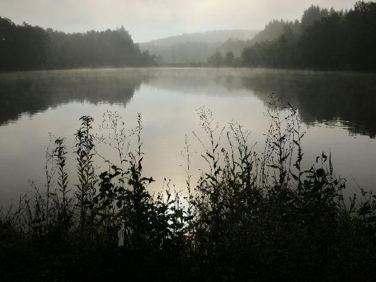 Ráno na Šnajberském rybníce