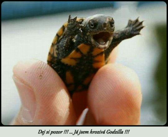 Malá Godzilla