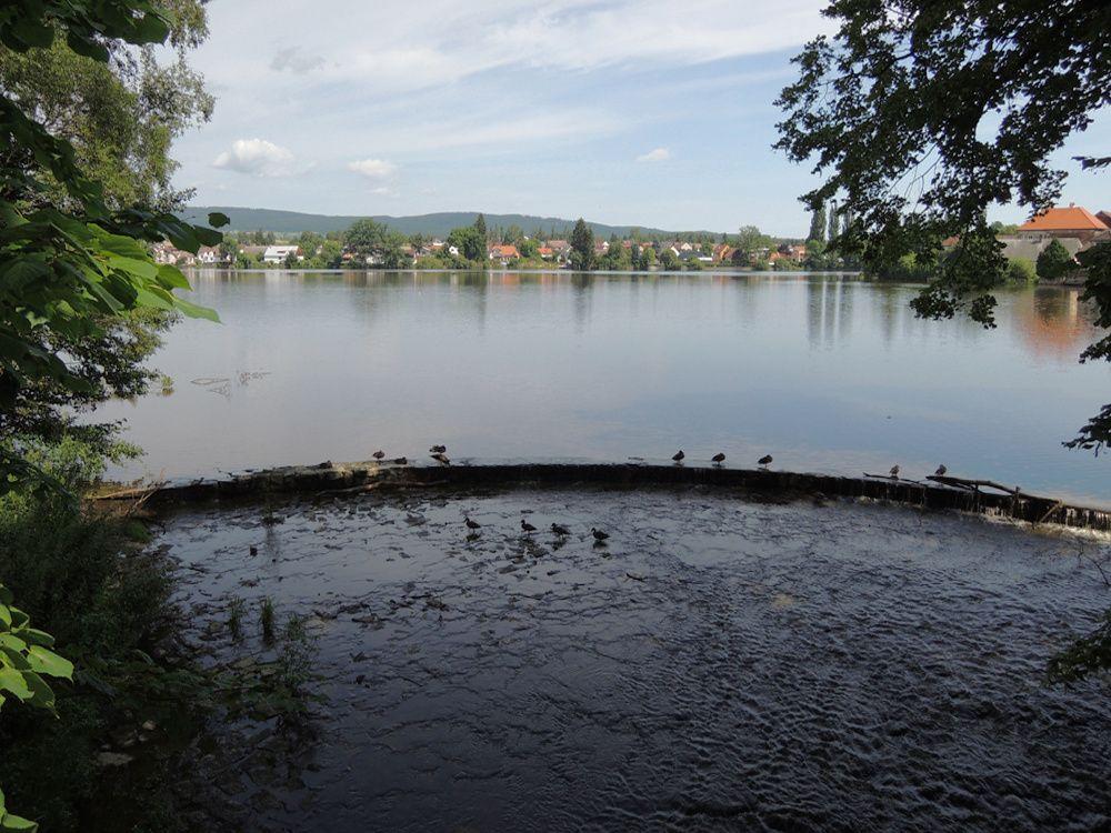 Podzámecký rybník