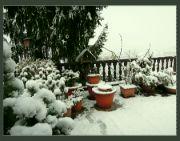 Nasněžilo
