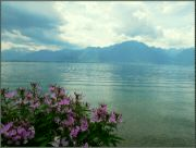 Ženevské jezero III