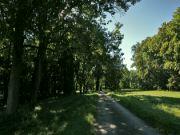 Les se mění v park