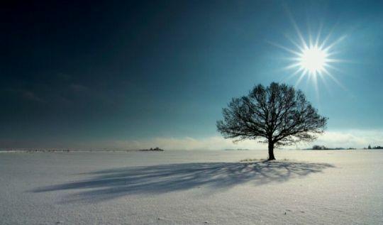 Zimní stín