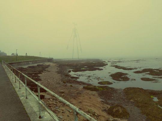 Siren Head schovaný v mlze