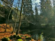 Starý železobetonový most