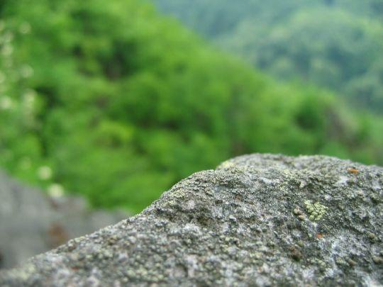 Okraj skaly