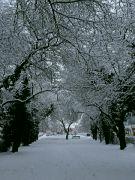 Zima v Hořicích