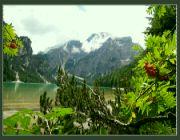 Pragser Wildsee VI