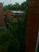 Deštivá zahrada z okna: Václav Kovalčík