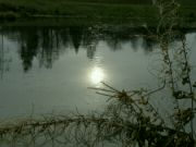 zimní slunce v hladině