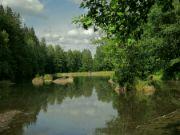 Rybník pod Zátiším