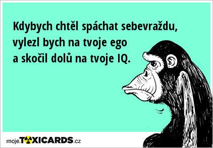 Úvaha Šimpanze