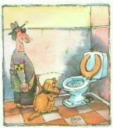slepecký pes to nemá jednoduché