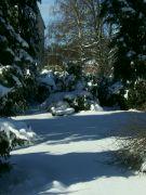 Zimní posezení v srdci lesoparku
