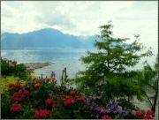 Ženevské jezero II
