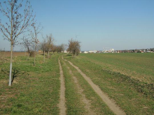Cesta k městu