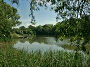 Skokanovský rybník