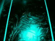 brána do jiných dimenzí