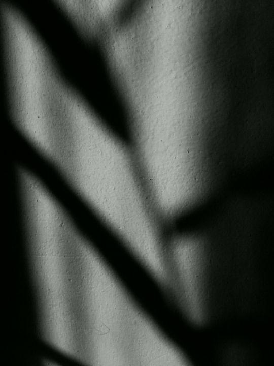 Hedychium coronarium art