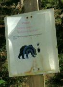 Pozor na medvědy