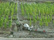 Vinařská lanovka