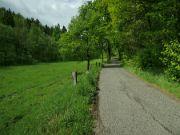 Cesta údolím.