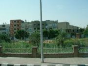 EGYPT 020