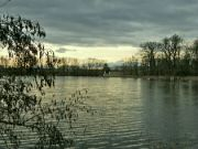 Počernický rybník