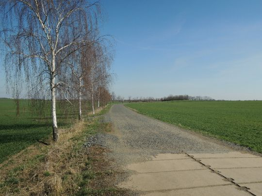 Cesta mezi poli