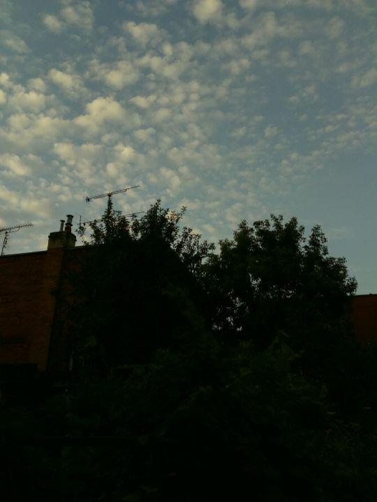 Ranní nebe nad zahradou...