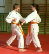 Já a Vrabeček v karate...