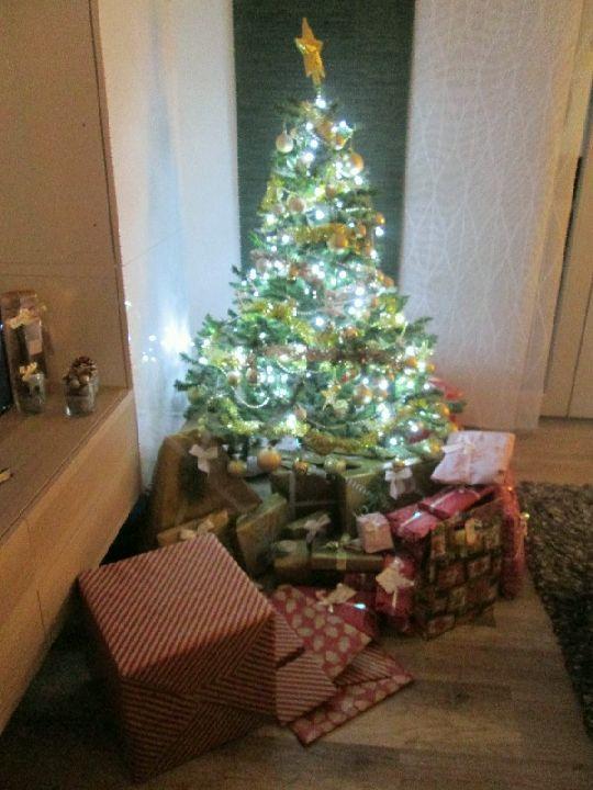 Vánoce 2016 006