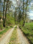 Jarní cesta