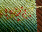 Odrazy hedvábí - detail