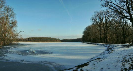 Bučický rybník