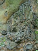 Kamenná růže