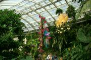 Botanická zahrada hl. m. Prahy v Troji