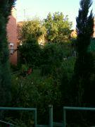 Červencová zahrada: Václav Kovalčík