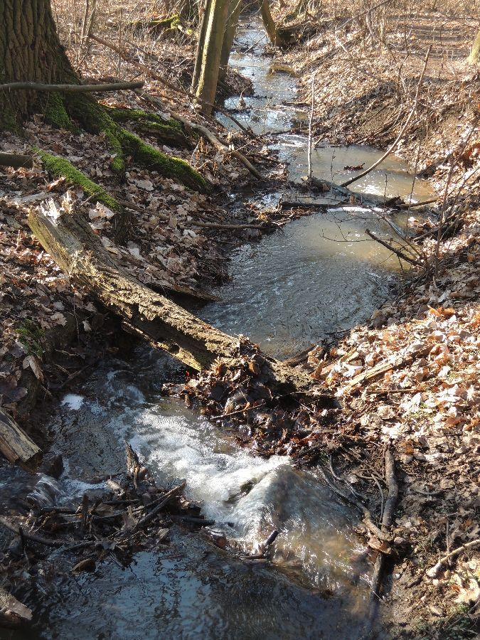 Zelenečský potok