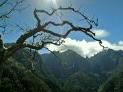Pohled na Pico Ruivo od severu