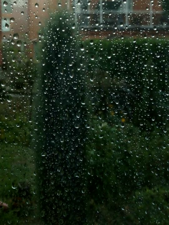 Dešťová fotografie