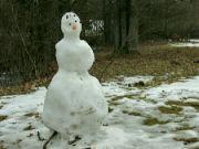 Poslední sněhulák