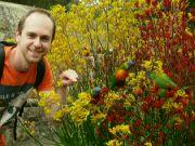 Australský papoušek