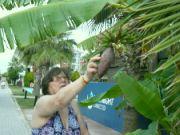cestou na koupání i banány k mání