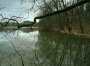 Rybník Eliška