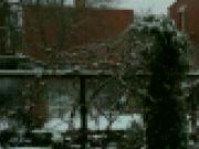 Zimní zahrada (Technika Instagramem)