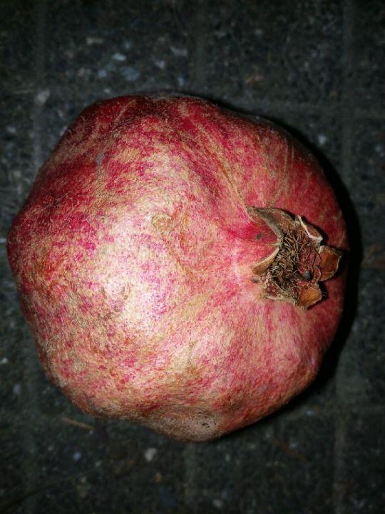 Granátové jablko v noci